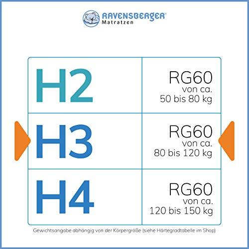 Ravensberger Struktura Med 60