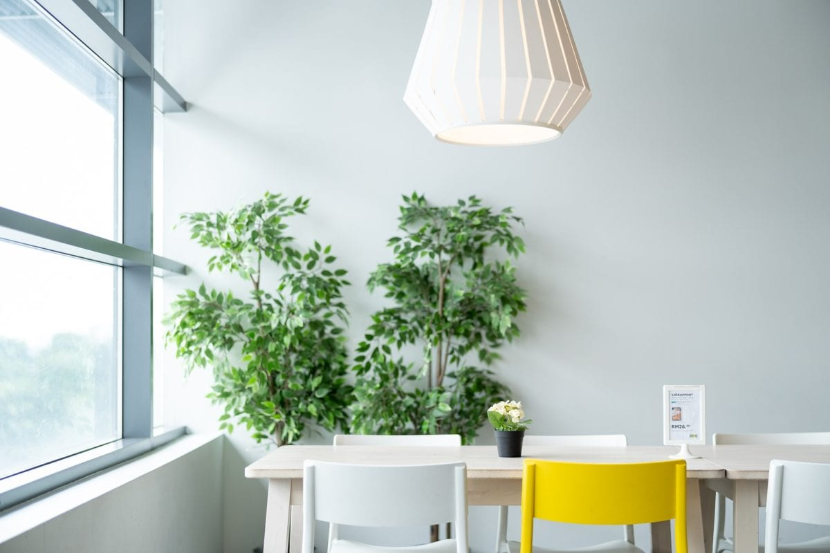 Pflanzen im Schlafzimmer - Können sie den Schlaf fördern?