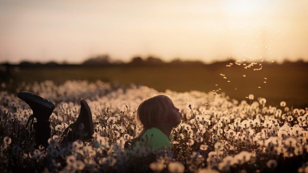 Kinder - Hohes Gras