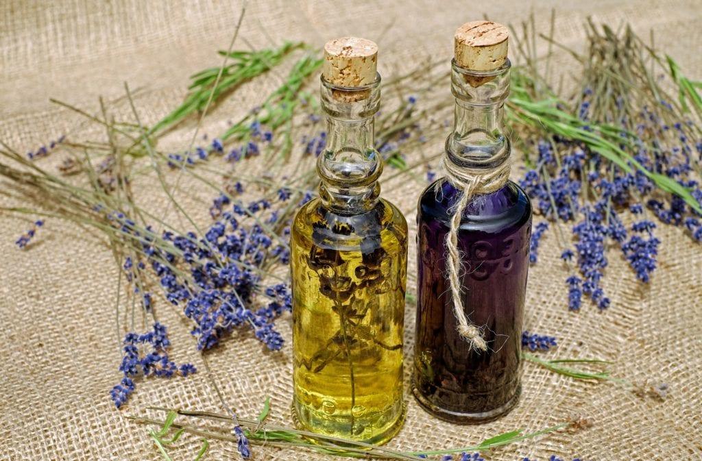Lavendelöl gegen Silberfische
